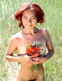 Sunny Weather And Green Field With Lots Of Different Flowers Is The Most Pleasant And Suitable Place